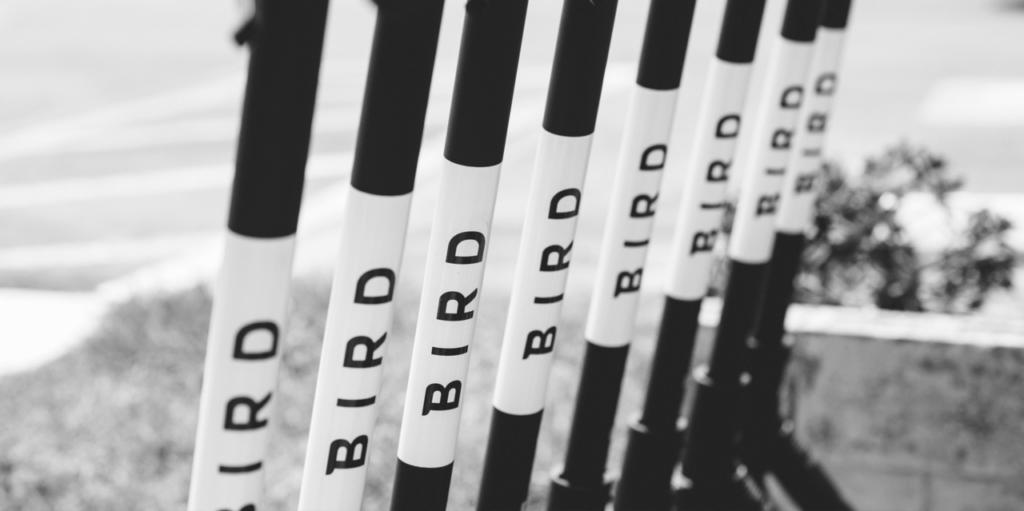 E-Scooter von Bird nun auch in Düsseldorf verfügbar